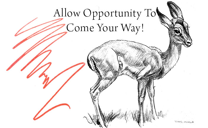 Allow-Opportunity-To-Come-Your-Way-Spendlove-and-Lamb