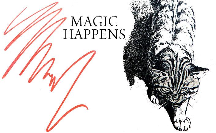 Magic-Happens-Spendlove-and-Lamb